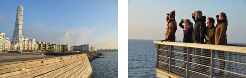 Getting an eyeful of Malmö dockside development.