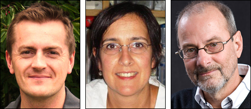 Stephen Cobley, Susana  Gil and Tomas Peterson (author of post).