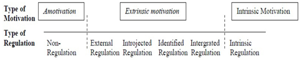 self determination theory essay Self-determination theory: an analysis of student motivation in an accounting degree program r cont fin – usp, são paulo, v 24, n 62, p 162-173, maio/jun.