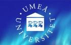Universitetslektor i pedagogik med inriktning mot skolämnet idrott och hälsa till Umeå universitet