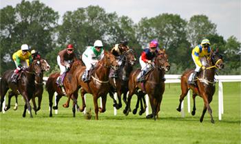 Ny bok om hästkapplöpningssporten och dess osäkra framtid