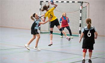Viktig avhandling om förståelsen av jämställd idrott