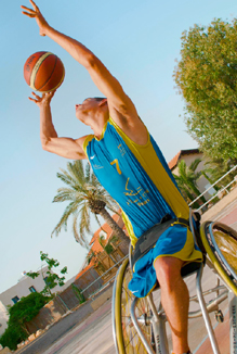 wheelchair-basket